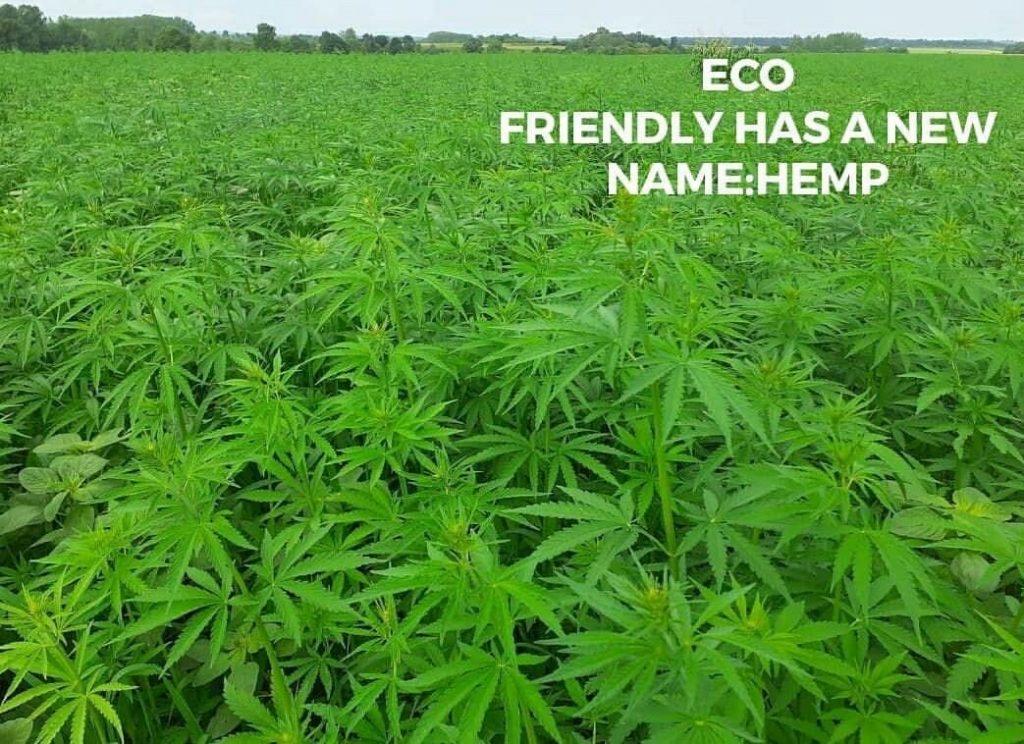 http://Hennep%20duurzaam%20beddengoed