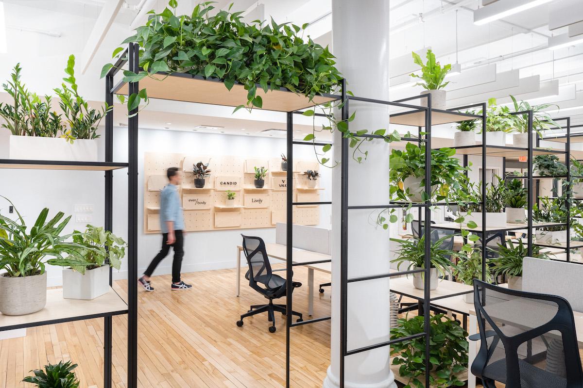 Zintuigen horen Room Divider van Planten