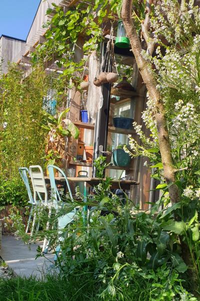 planten en bomen in een tuin