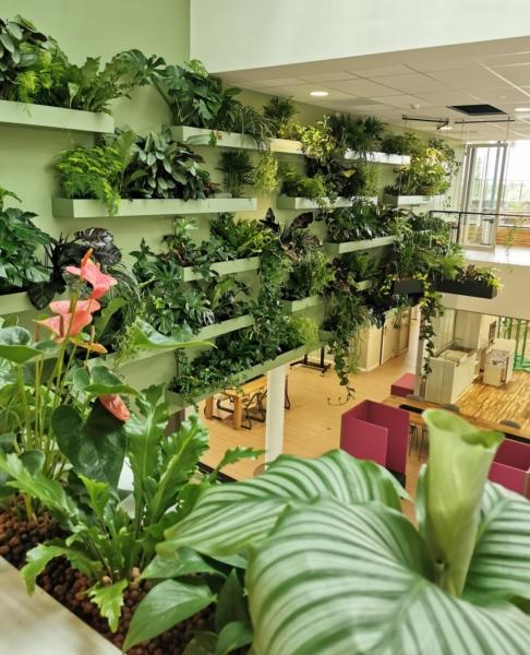 Studio M 74 Aeres Hogeschool Almere Planten